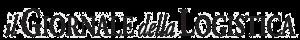 il giornale logo
